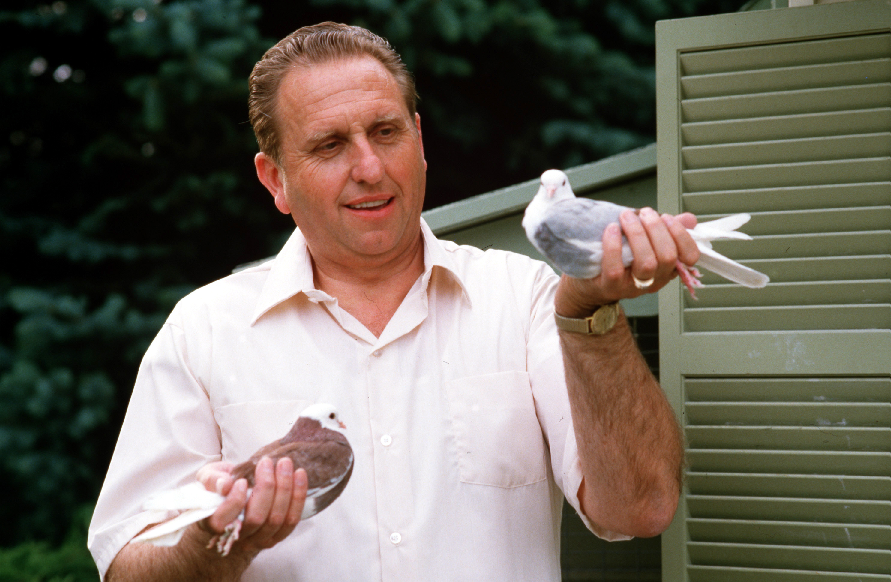 During an interview for a Church News article for the week beginning June 23, 1985, President Thomas S. Monson showed off a couple of his Birmingham roller pigeons.
