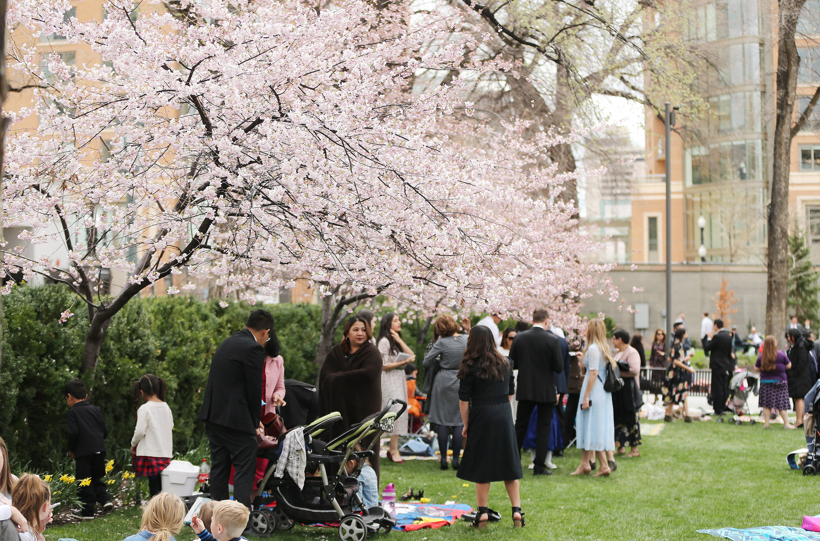 Conferencegoers stand near blossoming trees during the 189th Annual General Conference of The Church of Jesus Christ of Latter-day Saints in Salt Lake City on Sunday, April 7, 2019.