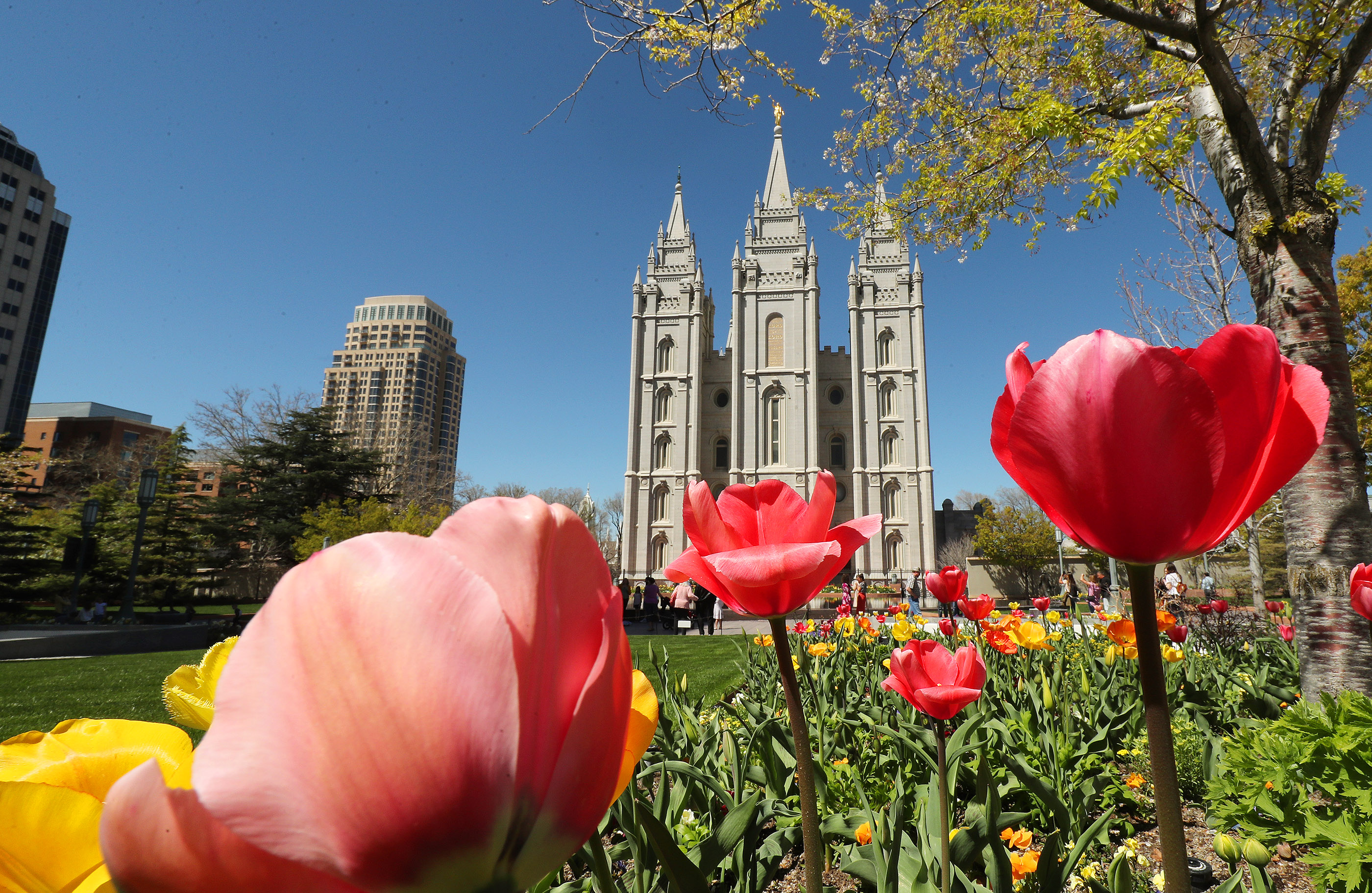 Flowers adorn the grounds of The Salt Lake Temple in Salt Lake City on Friday, April 19, 2019. Church officials announced renovations and changes to it and the grounds.