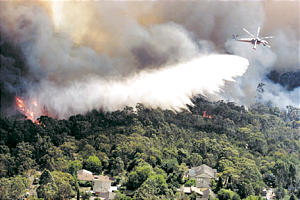 A helitanker drops water on fires as they threaten homes in North Epping, a suburb of Sydney, Australia, on New Year's Day.
