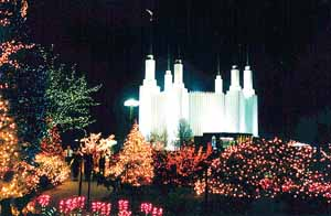 Washington D.C. Temple glistens white behind holiday lights symbolizing peace and life.
