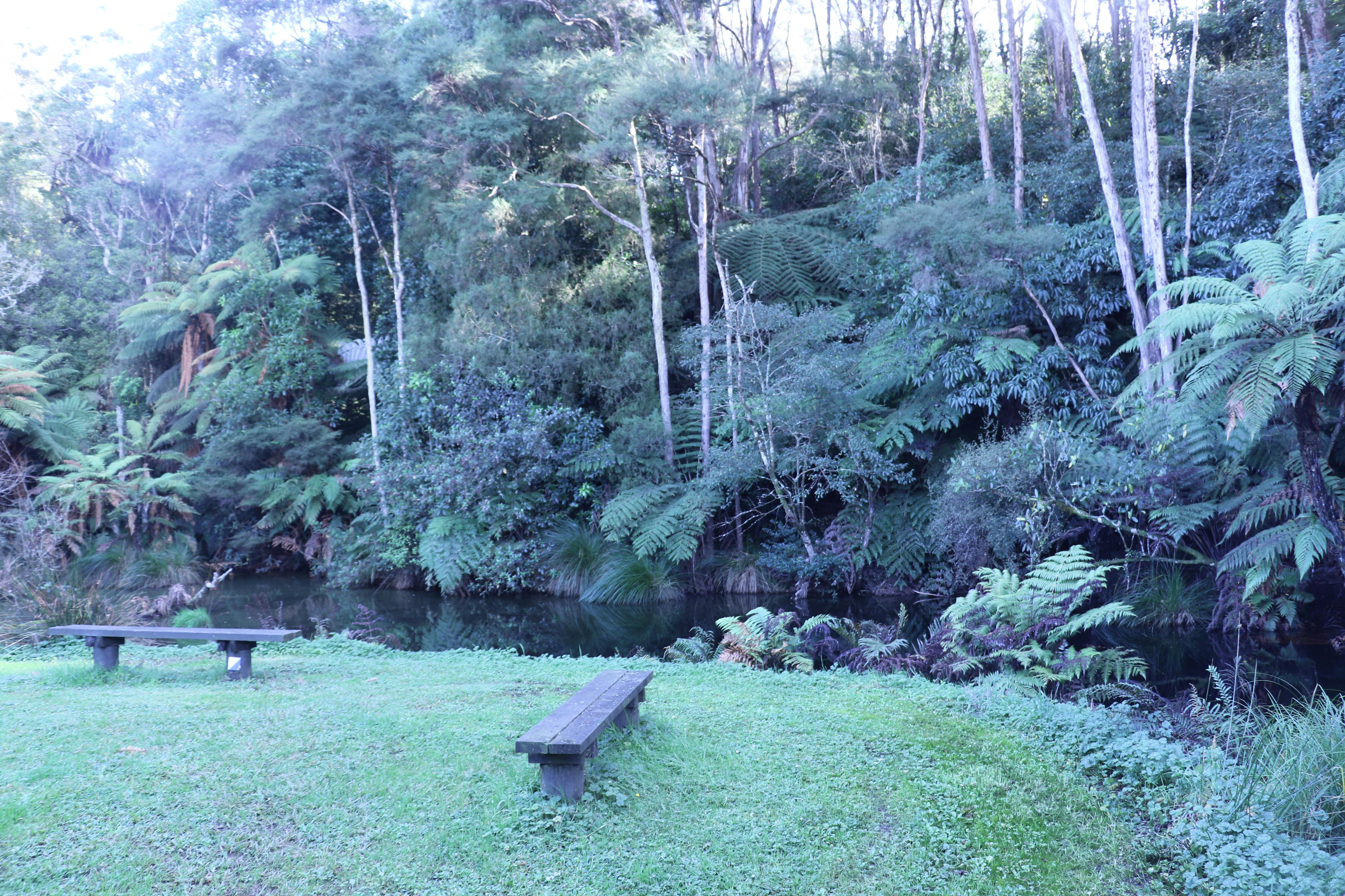 LDS Church-owned camp in New Zealand offers visitors a