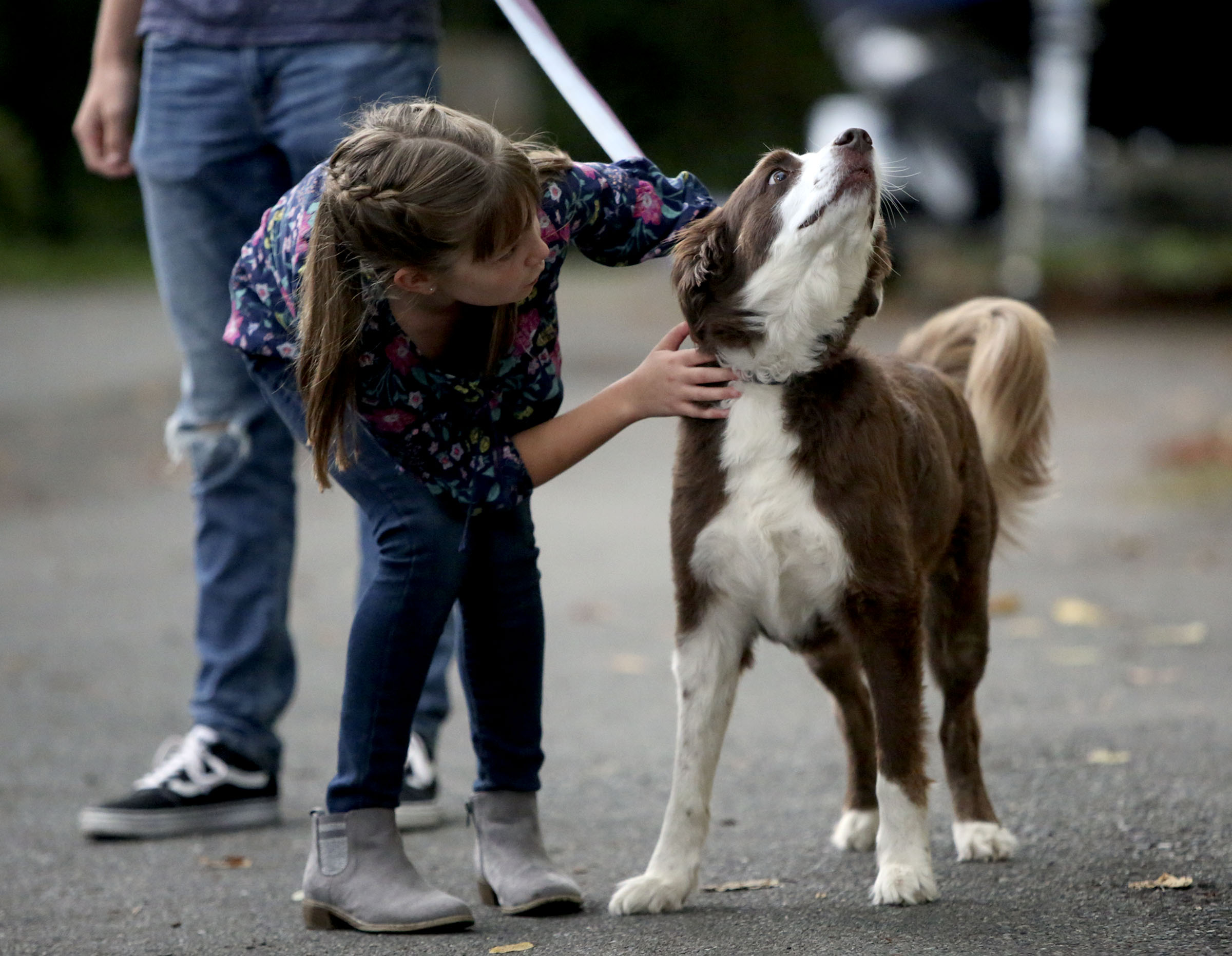Emilia Allen pets Lou outside of their home in Renton, Wash., on Friday, Sept. 14, 2018.