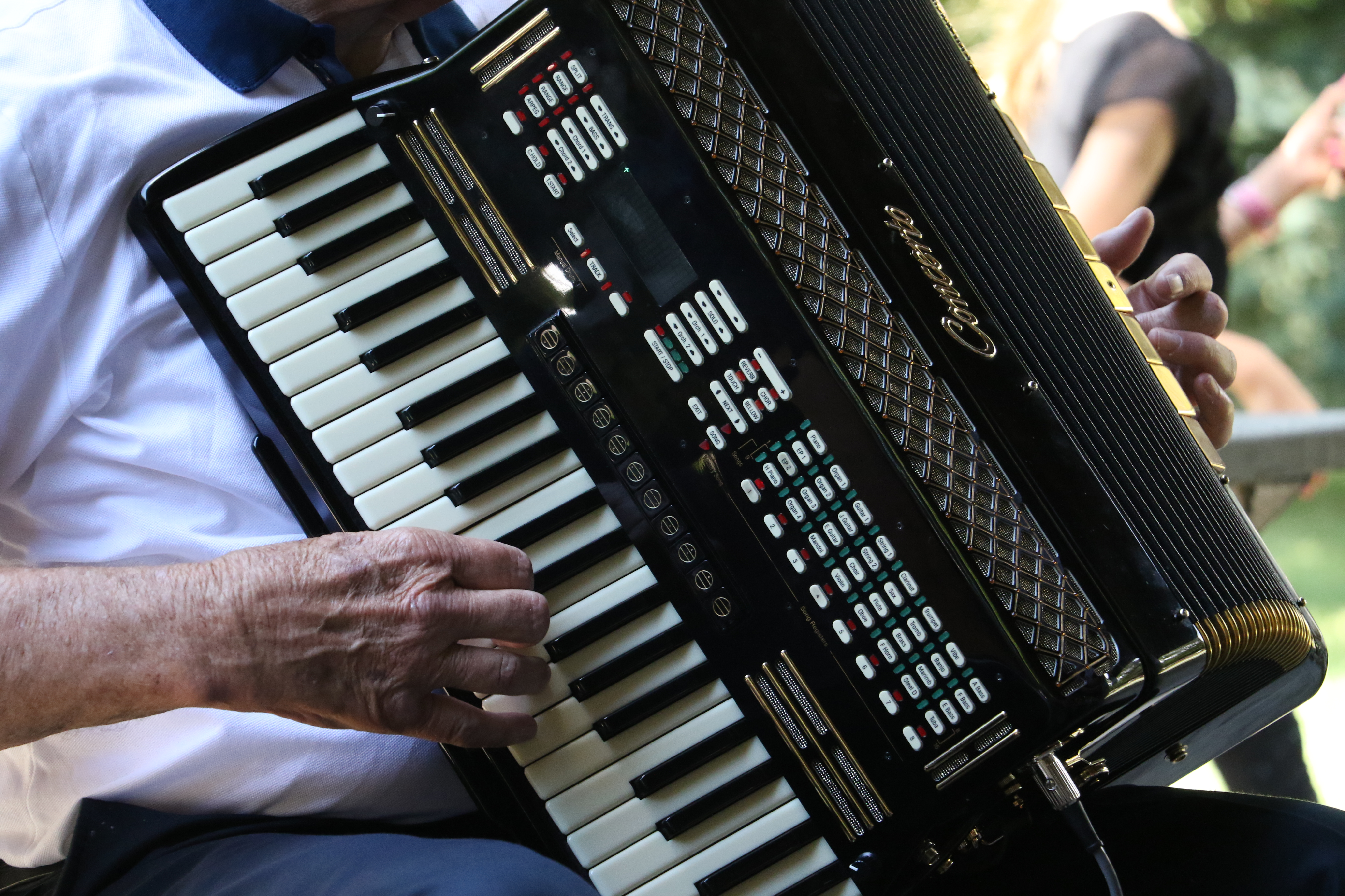 The hands of Jim Jensen, a local musician, play the accordion at the German Speaking Ward picnic on July 13, 2019.