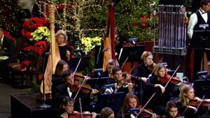 orchestra, devotional