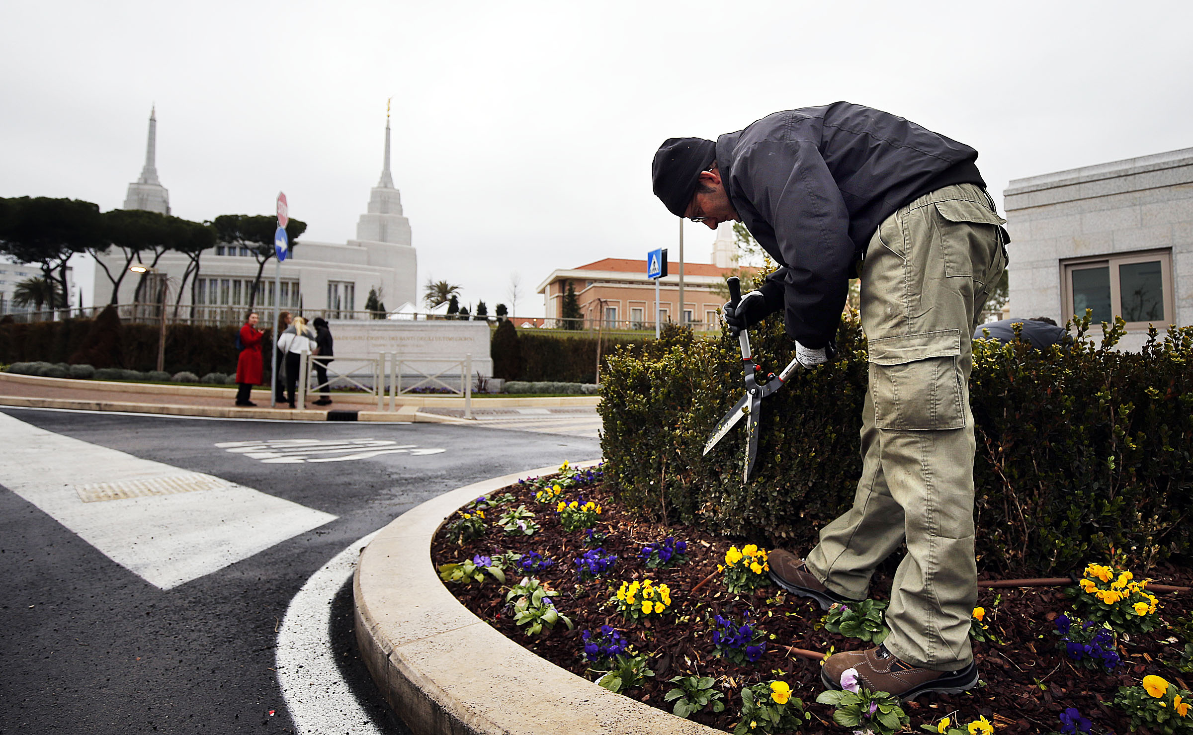 Giuliano Falehi trims shrubs outside the gate of the Rome Italy Temple of The Church of Jesus Christ of Latter-day Saints on Monday, Jan. 14, 2019.