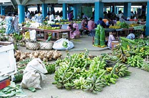 Outdoor farmers market in Port Vila illustrates abundance of produce available. Neither tipping nor bartering are done in Vanuatu. Each of the major islands has its own aspect of Melanesian culture.