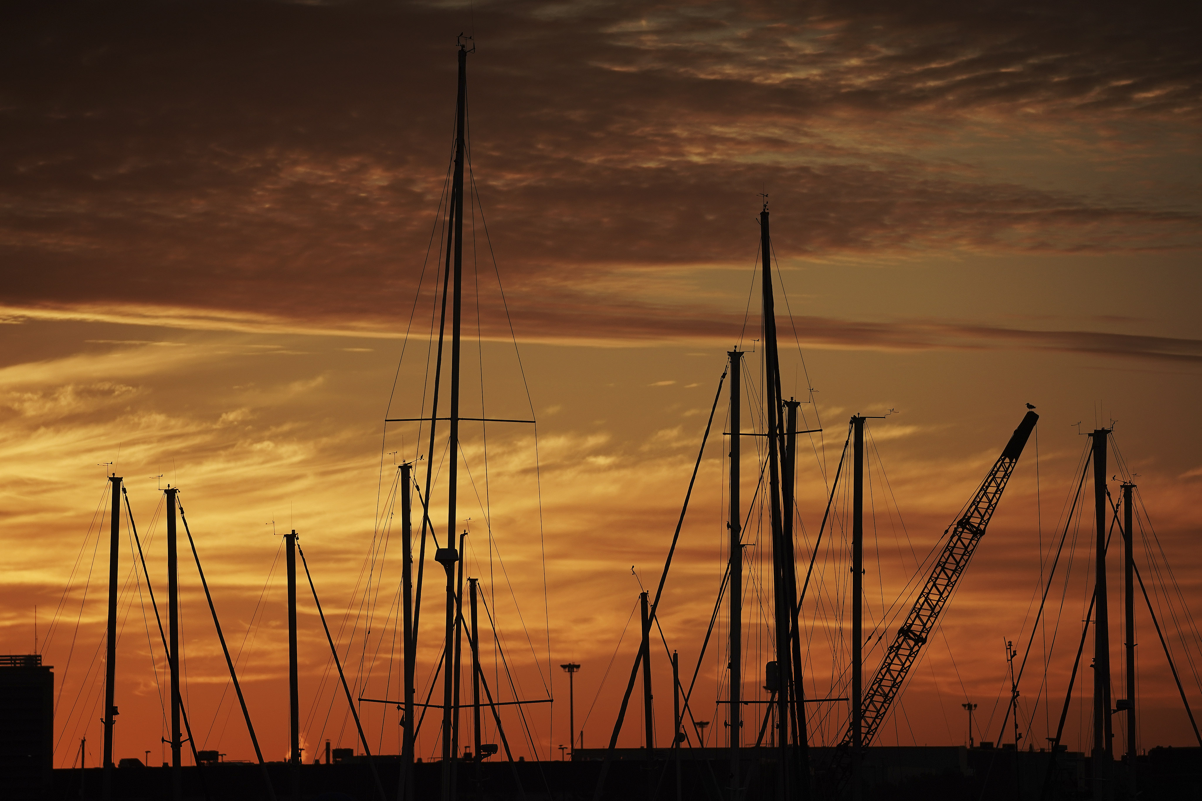 The sun rises on above the marina at Jeffries Point in Boston on Sunday, Oct. 20, 2019.