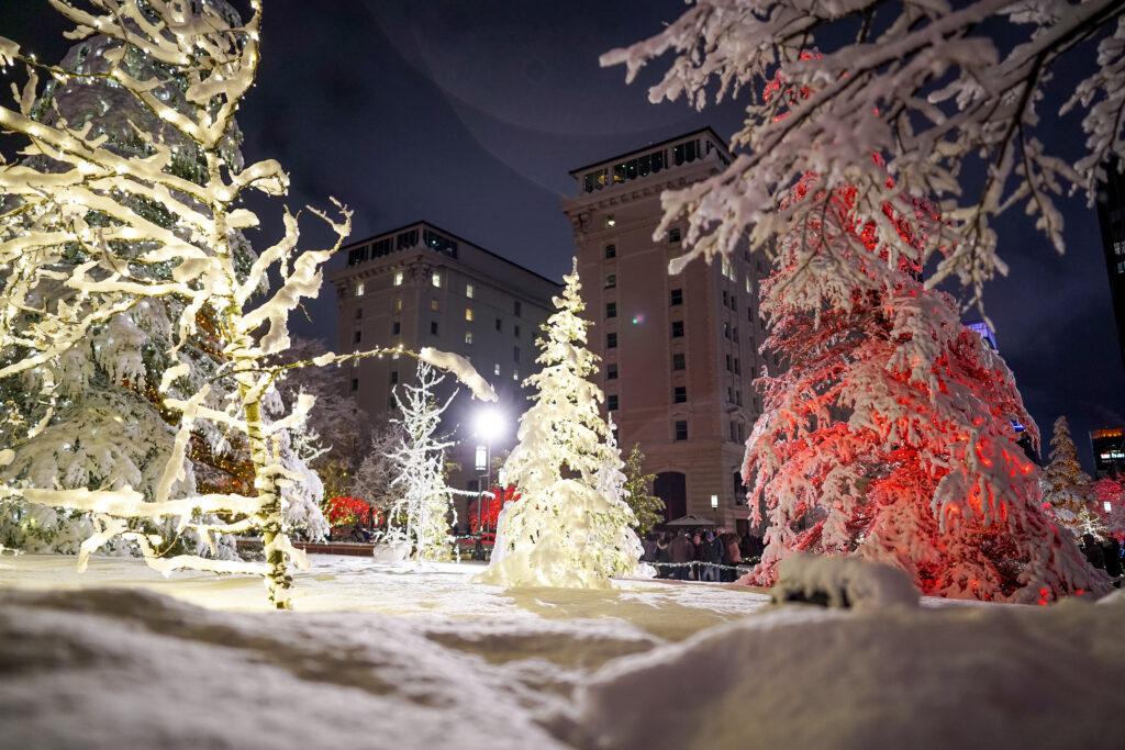 Los árboles cubiertos de nieve se iluminan en la primera noche de la exhibición anual de luces navideñas en Temple Square en Salt Lake City el viernes 29 de noviembre de 2019.