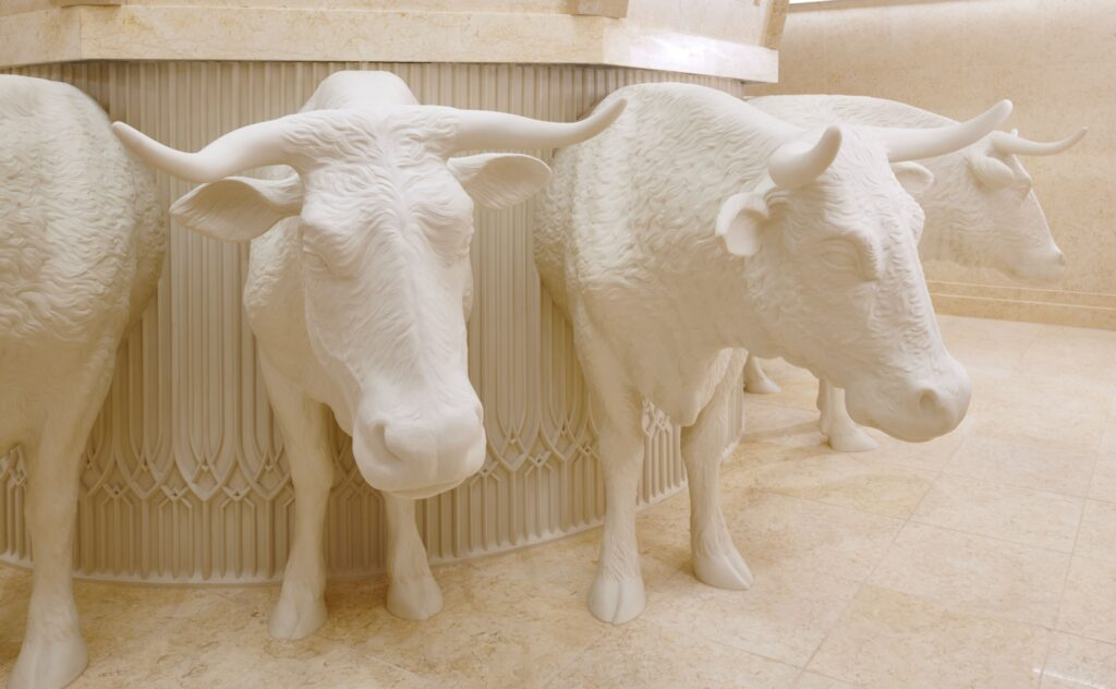 The baptistry font is on the backs of 12 oxen in the Durban South Africa Temple.