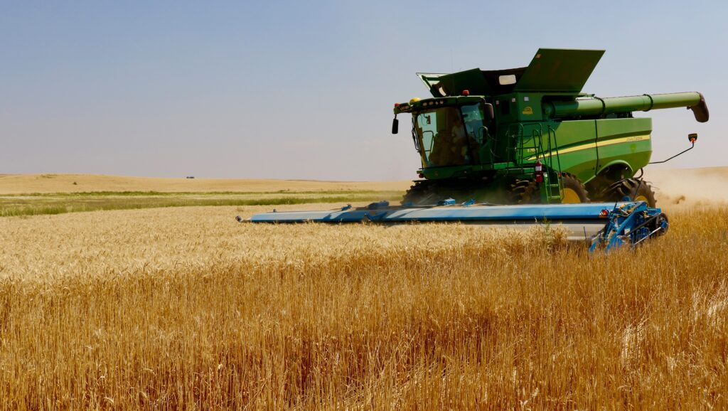 A combine harvests wheat at a Church-owned welfare farm in Geraldine, Montana, in 2018. The ongoing coronavirus has little impact on operations on Church wheat farms.