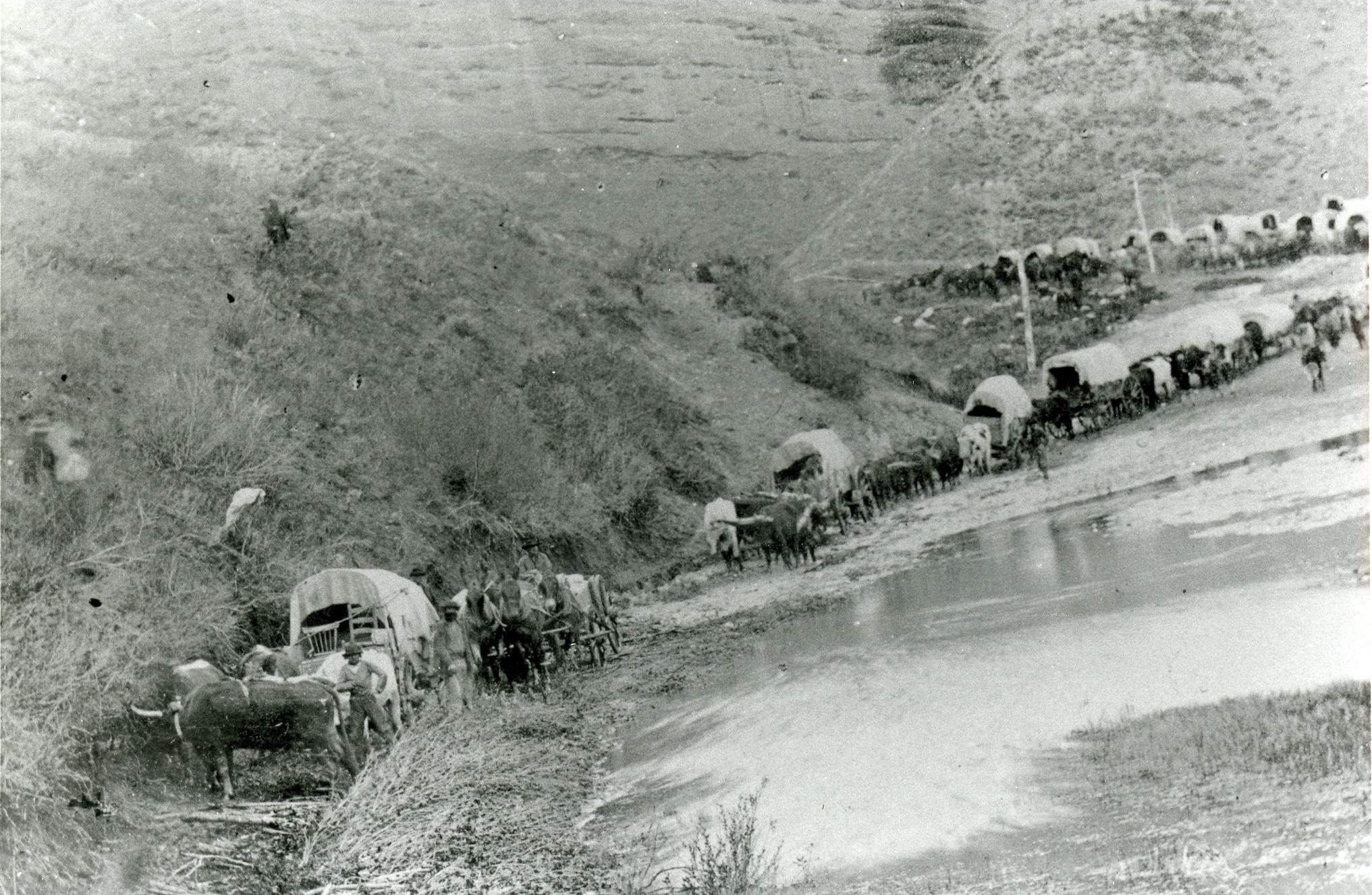 Os pioneiros caminham pelo deserto com vagões cobertos e carrinhos de mão.