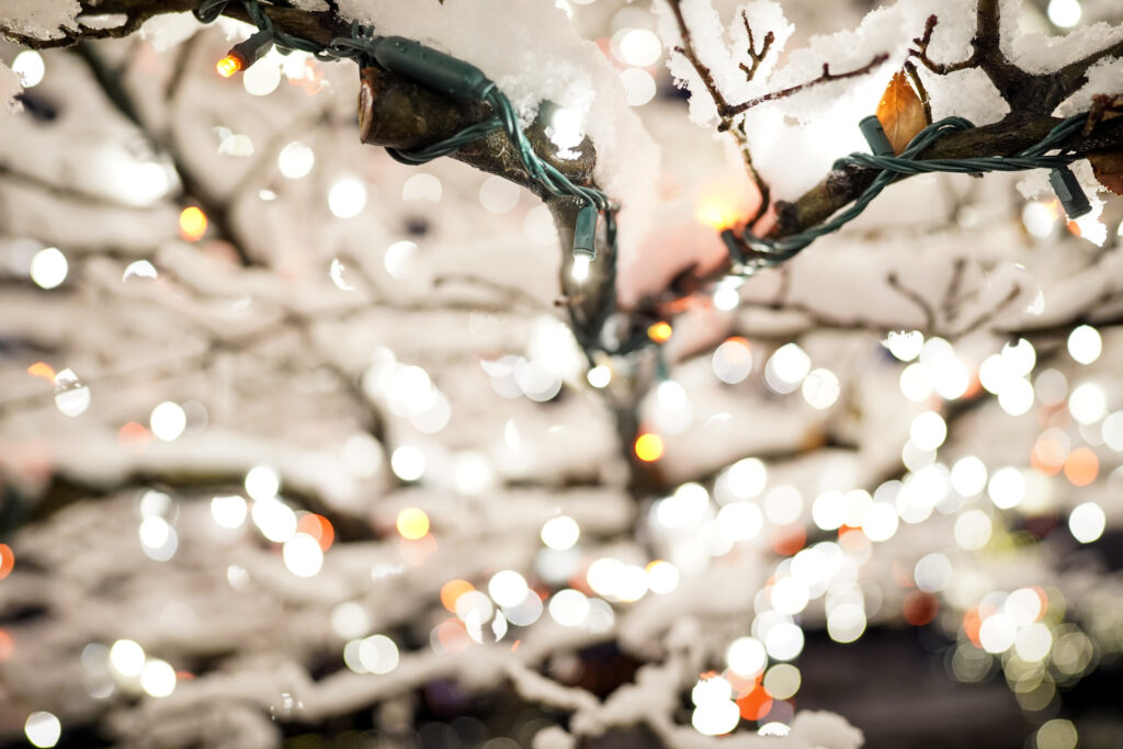 Árvores cobertas de neve são iluminadas na primeira noite da exposição anual de luzes de Natal na Praça do Templo em Salt Lake City, Utah, na sexta-feira, 29 de novembro de 2019.