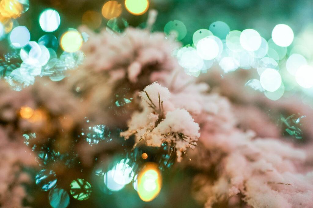 Árboles cubiertos de nieve iluminados en la primera noche del encendido anual de las luces Navideñas en la Manzana del Templo, en Salt Lake City, Utah, el viernes 29 de noviembre de 2019.